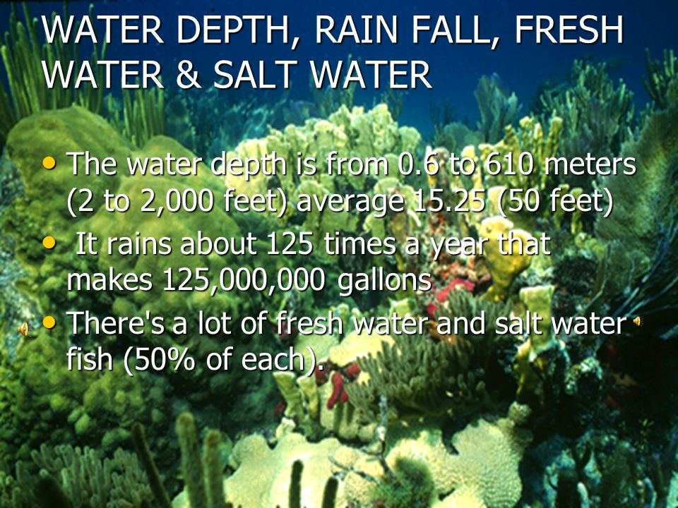 WATER DEPTH, RAIN FALL, FRESH WATER & SALT WATER