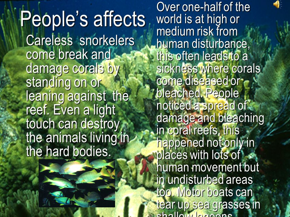 People's affects