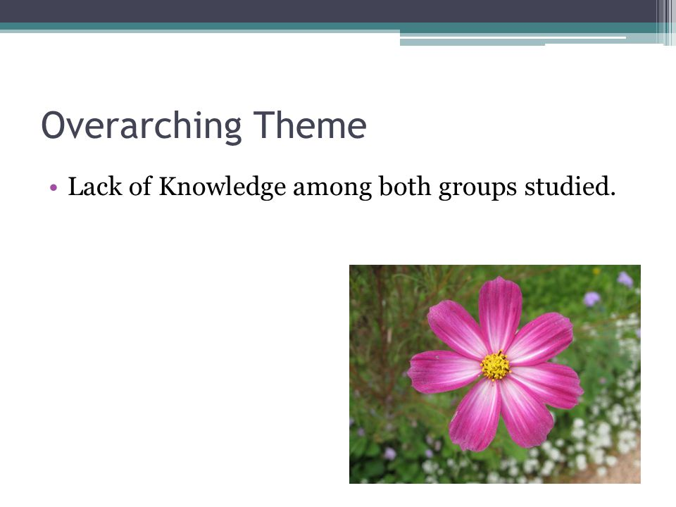 Overarching Theme Lack of Knowledge among both groups studied.