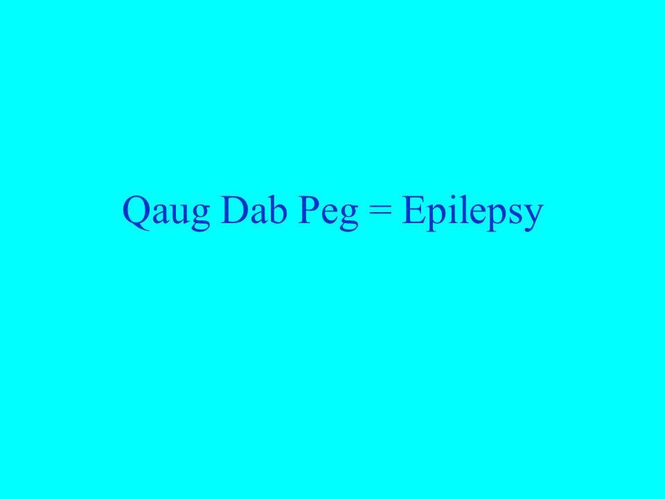 Qaug Dab Peg = Epilepsy