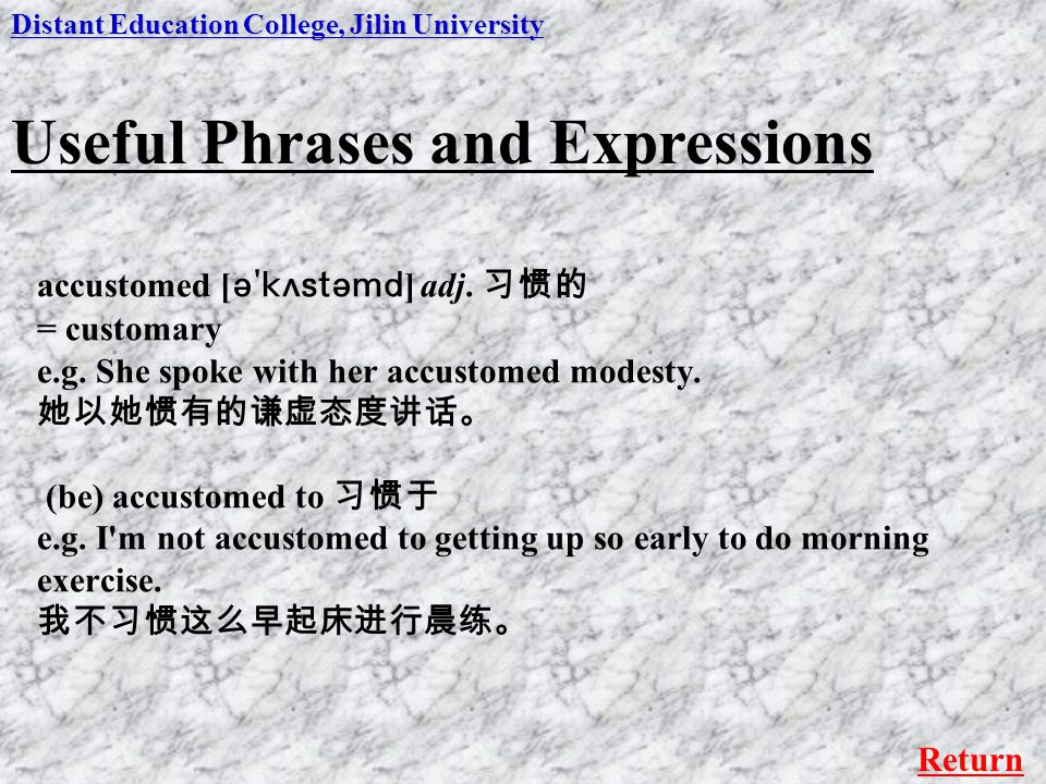 Useful Phrases and Expressions