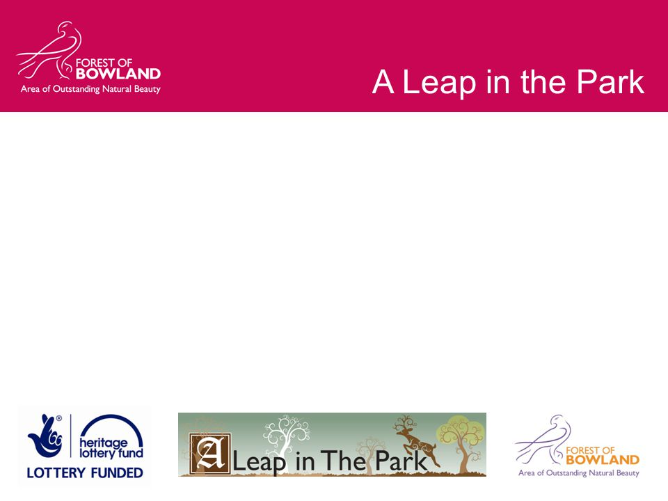 A Leap in the Park