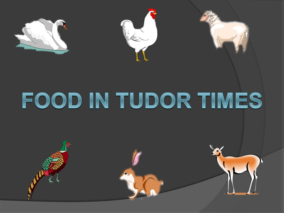 FOOD IN TUDOR TIMES