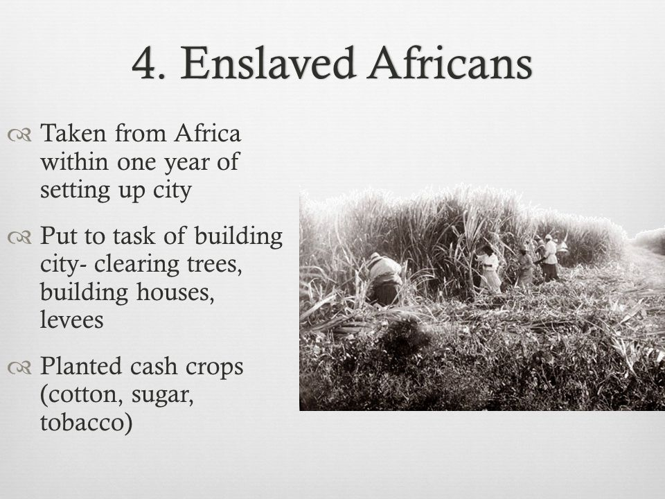 4. Enslaved Africans Taken from Africa within one year of setting up city.