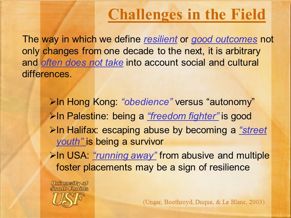 Challenges in the Field