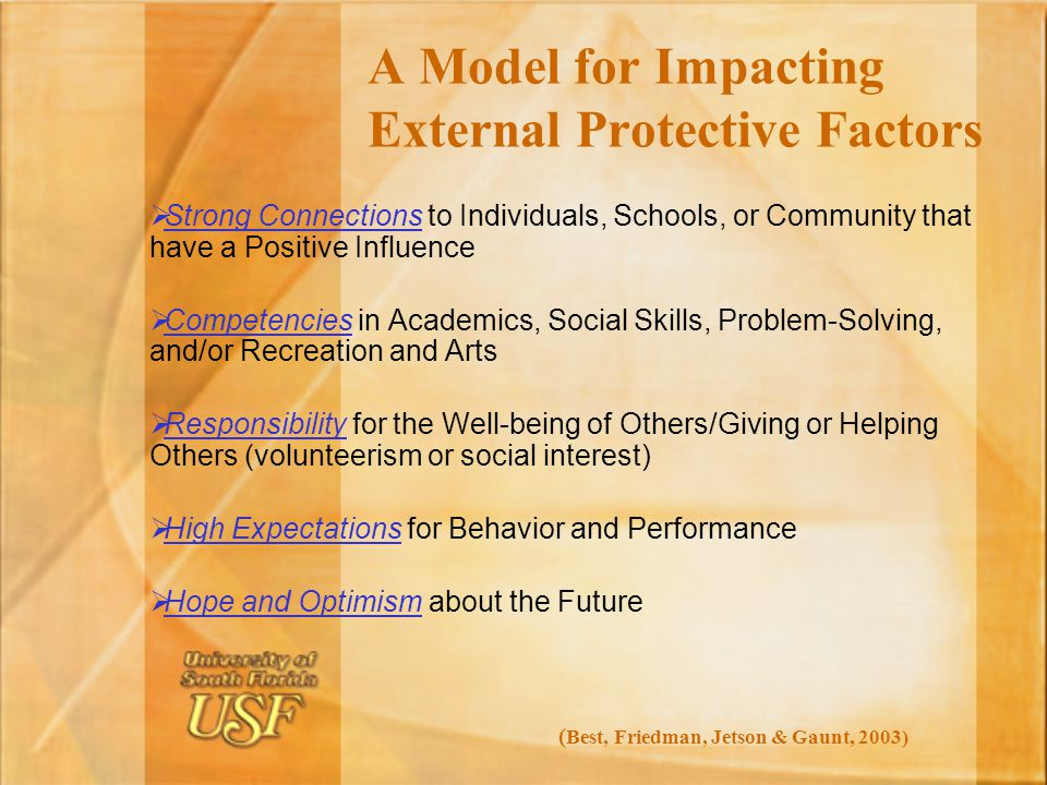 A Model for Impacting External Protective Factors