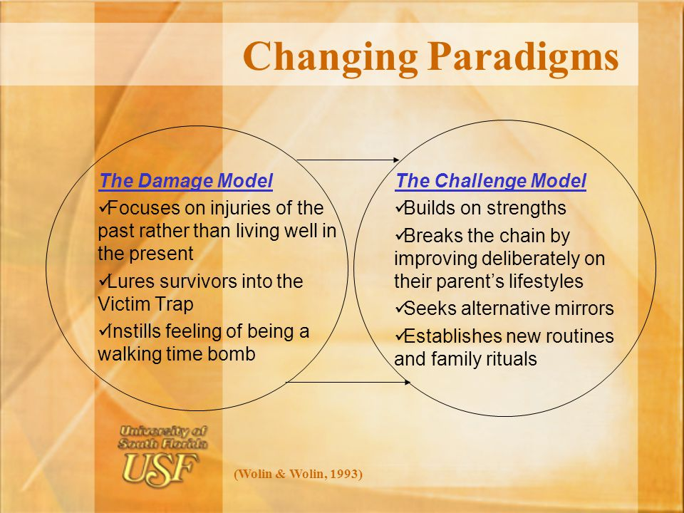 Changing Paradigms The Damage Model