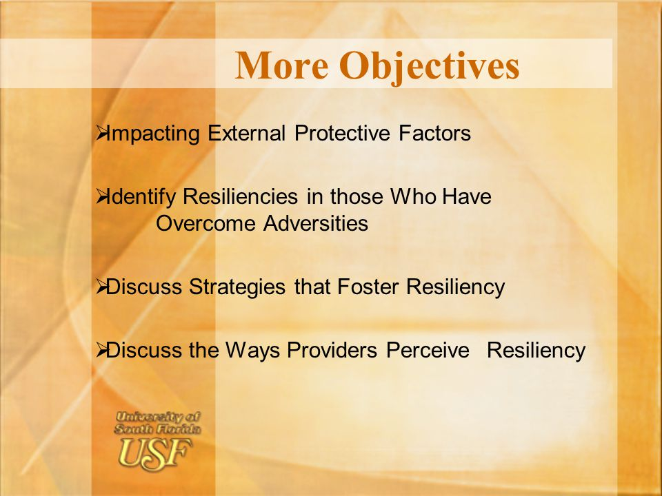 More Objectives Impacting External Protective Factors