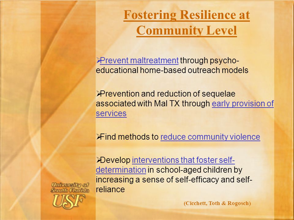 Fostering Resilience at Community Level