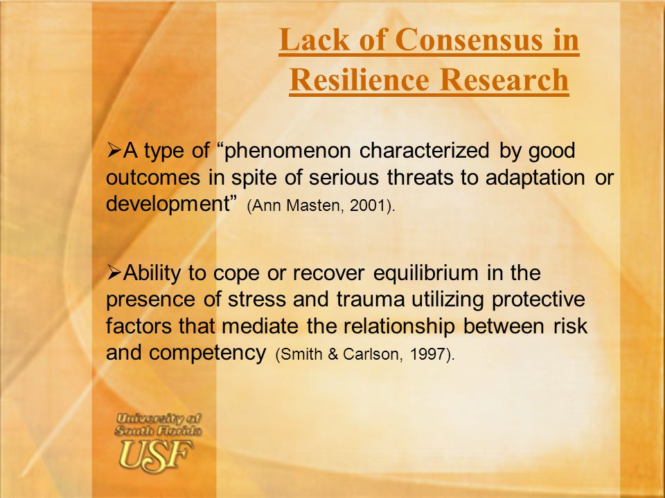 Lack of Consensus in Resilience Research