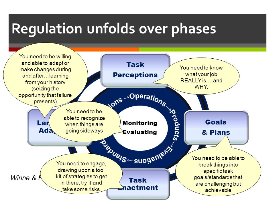 Regulation unfolds over phases