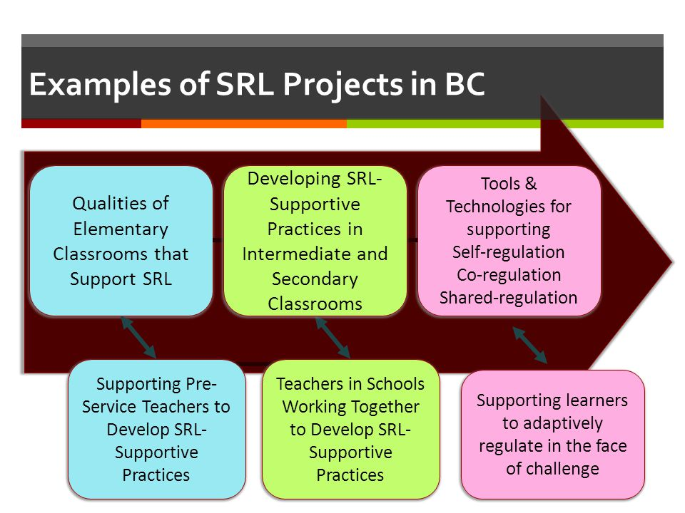 Examples of SRL Projects in BC