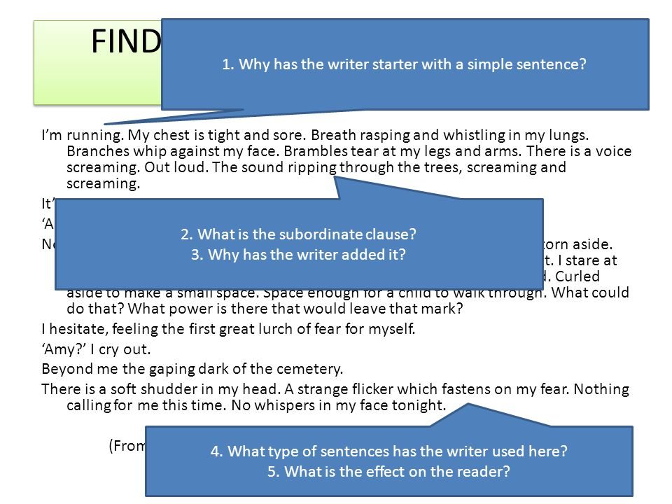 FIND AND LABEL THE DIFFERENT SENTENCE TYPES.