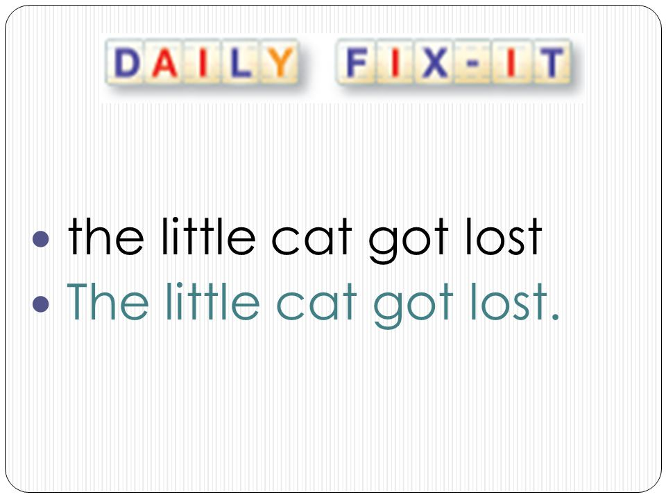 the little cat got lost The little cat got lost.