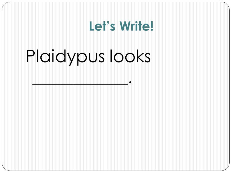 Plaidypus looks ___________.