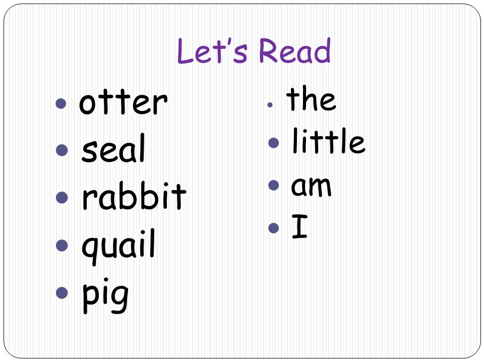 Let's Read otter seal rabbit quail pig the little am I