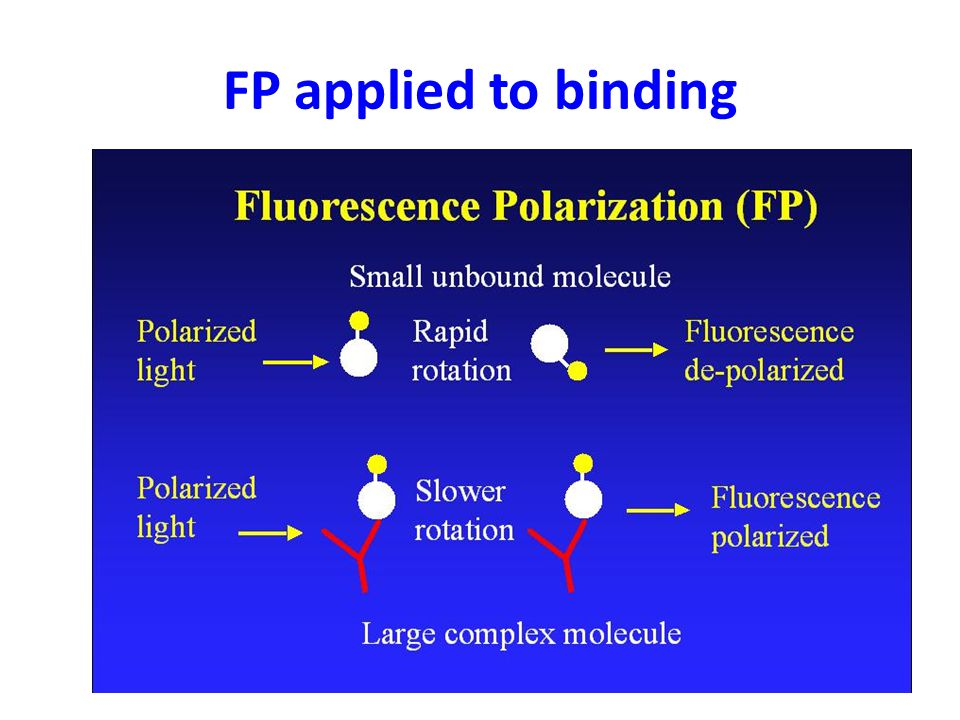 FP applied to binding