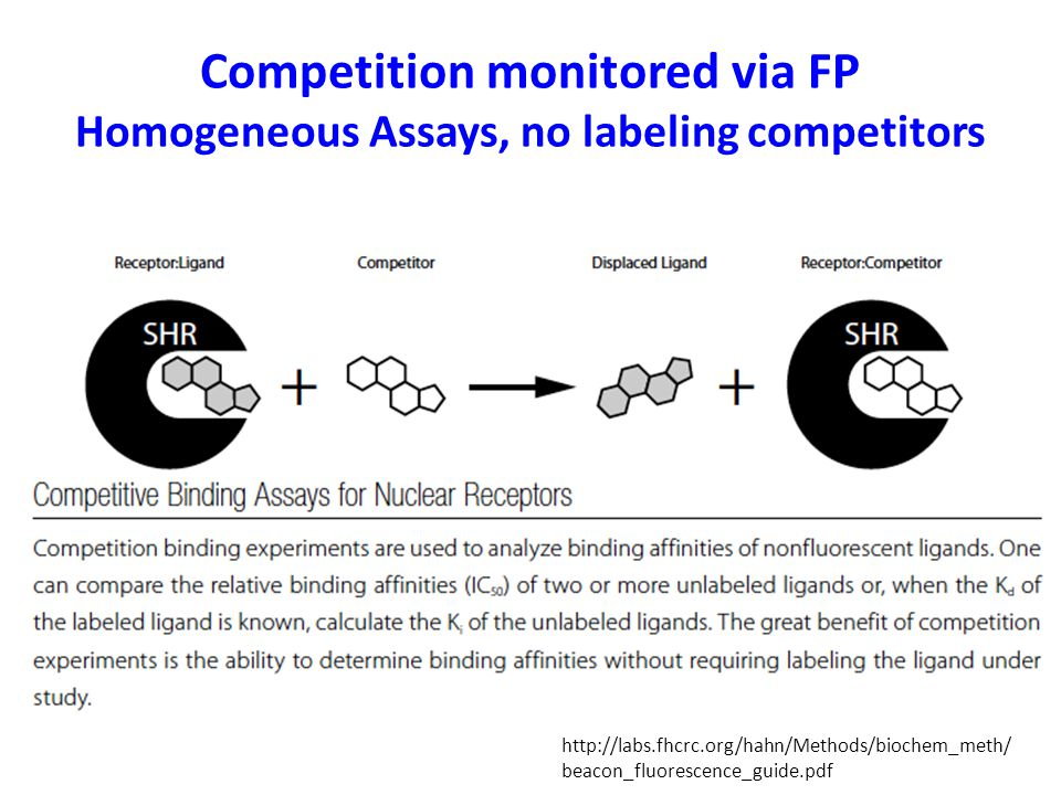 Competition monitored via FP Homogeneous Assays, no labeling competitors