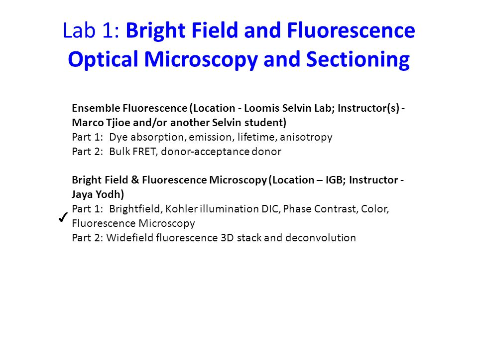 Lab 1: Bright Field and Fluorescence Optical Microscopy and Sectioning