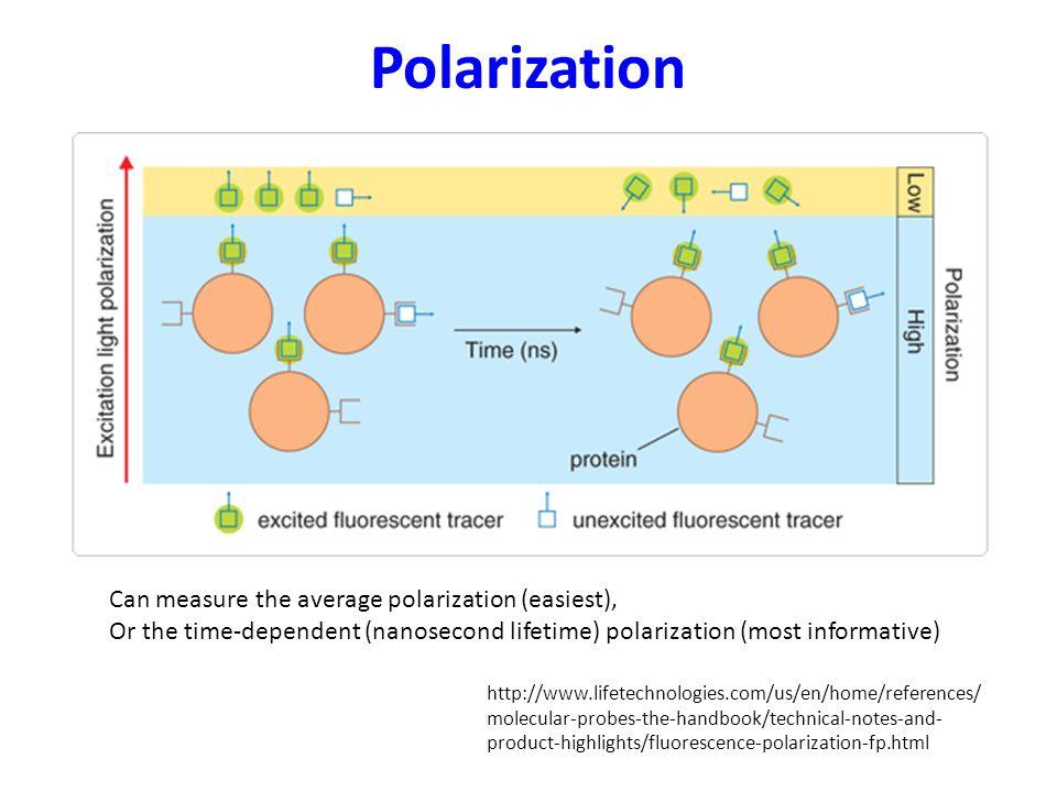 Polarization Can measure the average polarization (easiest),