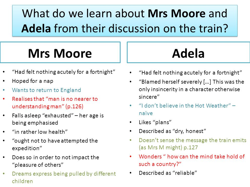 What do we learn about Mrs Moore and Adela from their discussion on the train