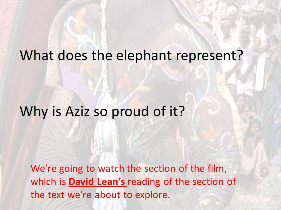 What does the elephant represent Why is Aziz so proud of it