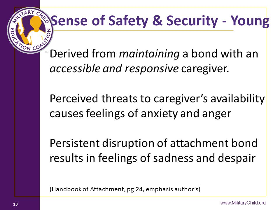 Sense of Safety & Security - Young