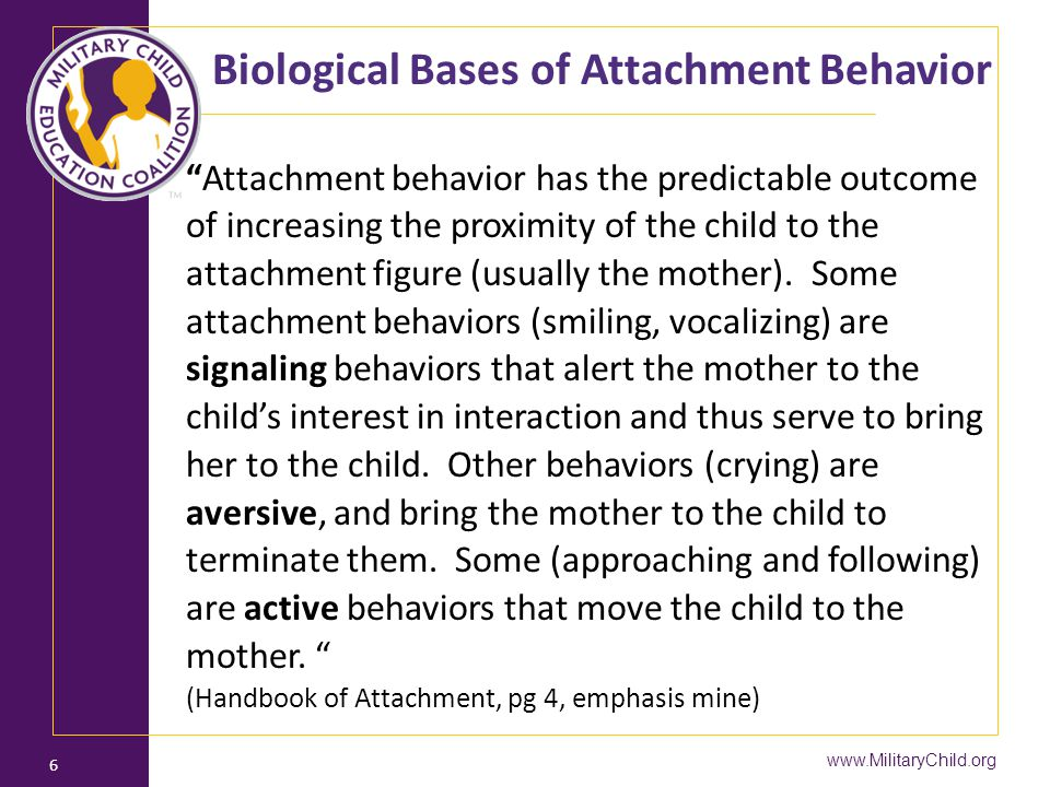 Biological Bases of Attachment Behavior