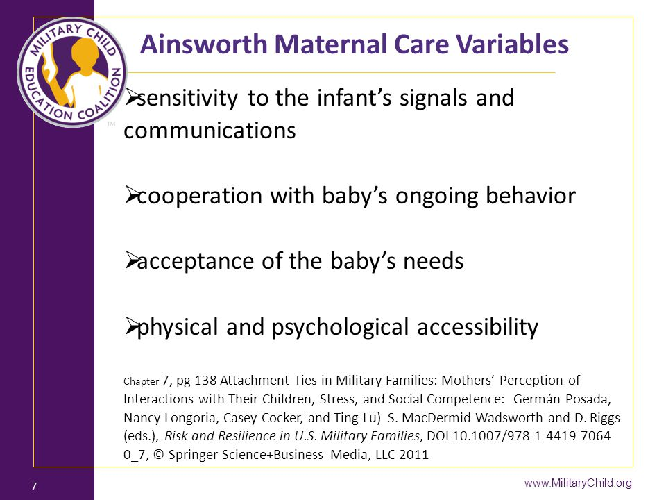 Ainsworth Maternal Care Variables