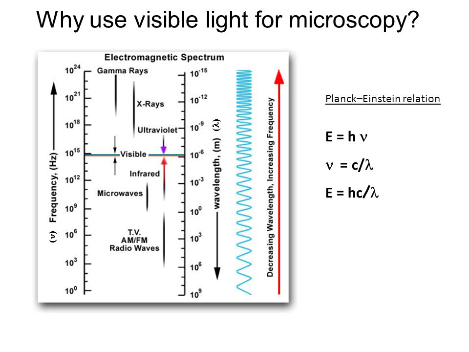 Why use visible light for microscopy