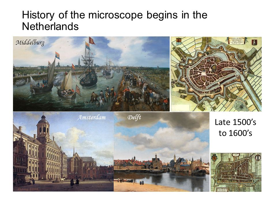 History of the microscope begins in the Netherlands