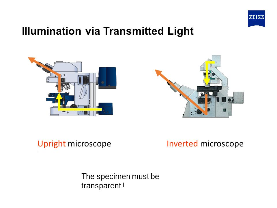 Illumination via Transmitted Light