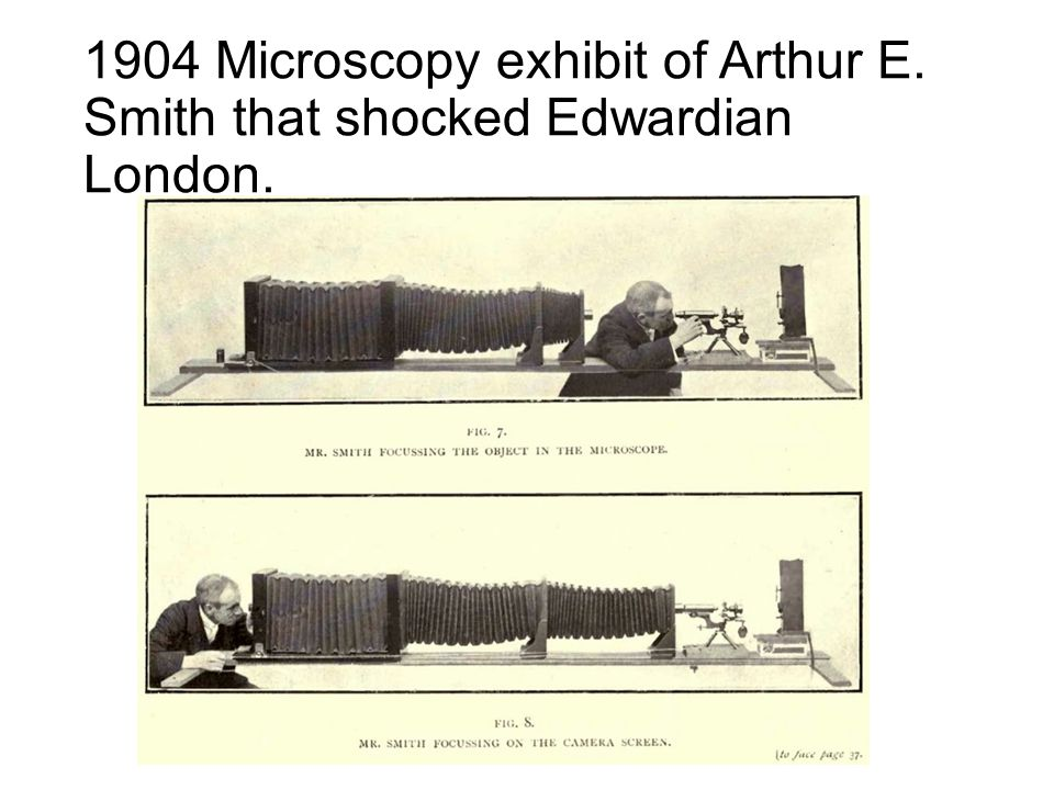1904 Microscopy exhibit of Arthur E