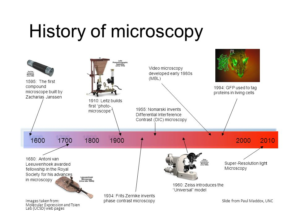 History of microscopy Video microscopy developed early 1980s (MBL) 1595: The first compound microscope built by Zacharias Janssen.
