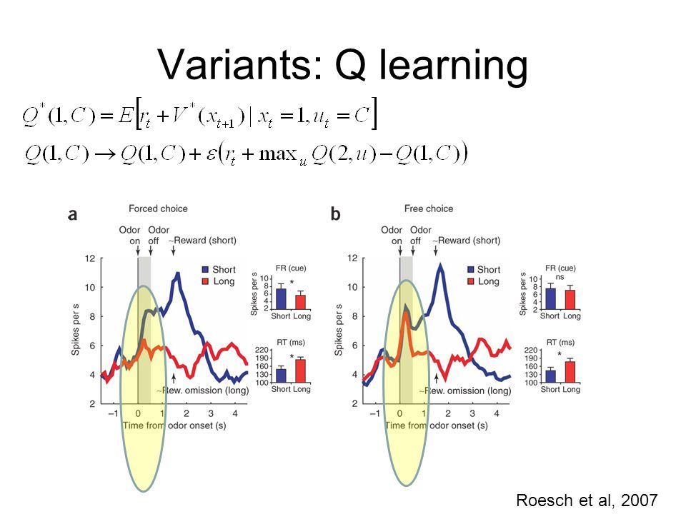 Variants: Q learning Roesch et al, 2007