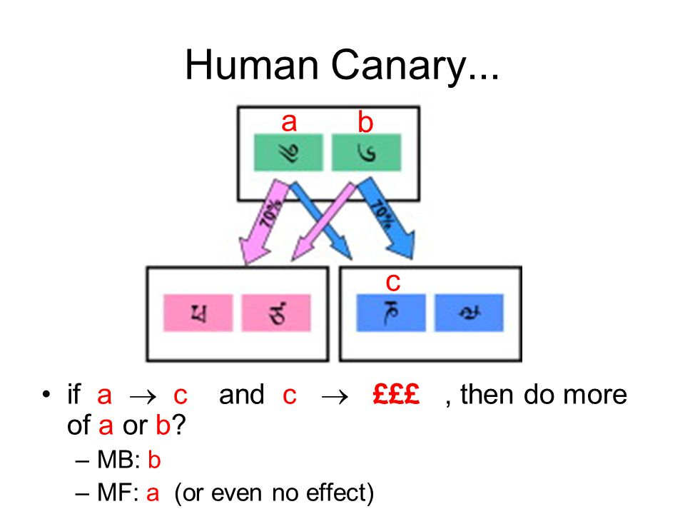 Human Canary... a b c if a  c and c  £££ , then do more of a or b