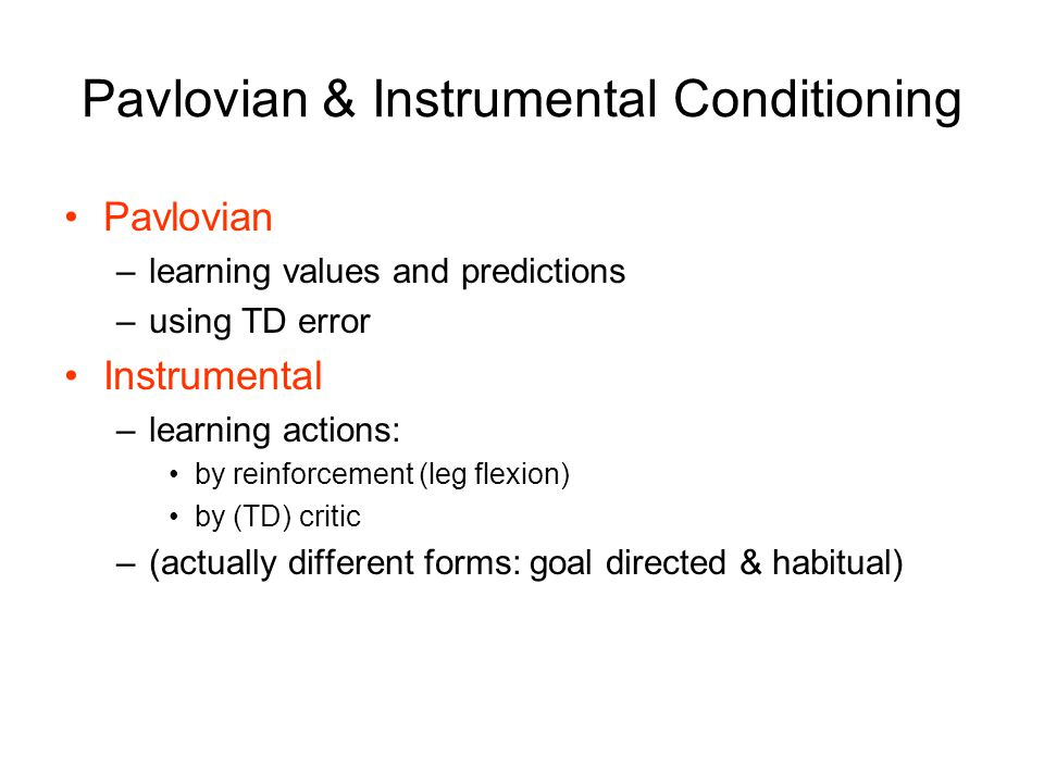 Pavlovian & Instrumental Conditioning