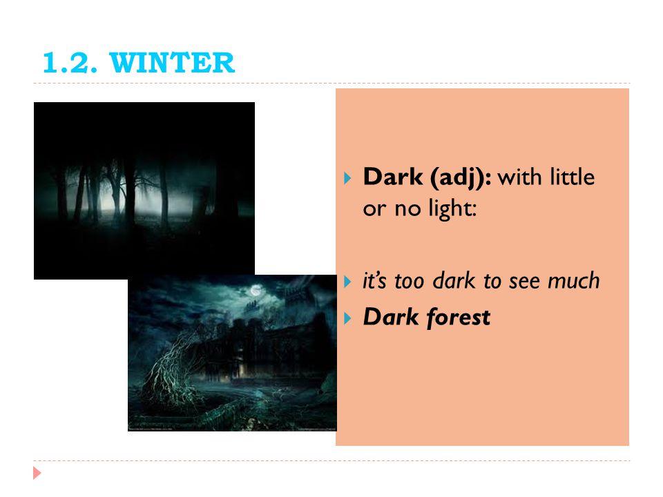 1.2. WINTER Dark (adj): with little or no light: