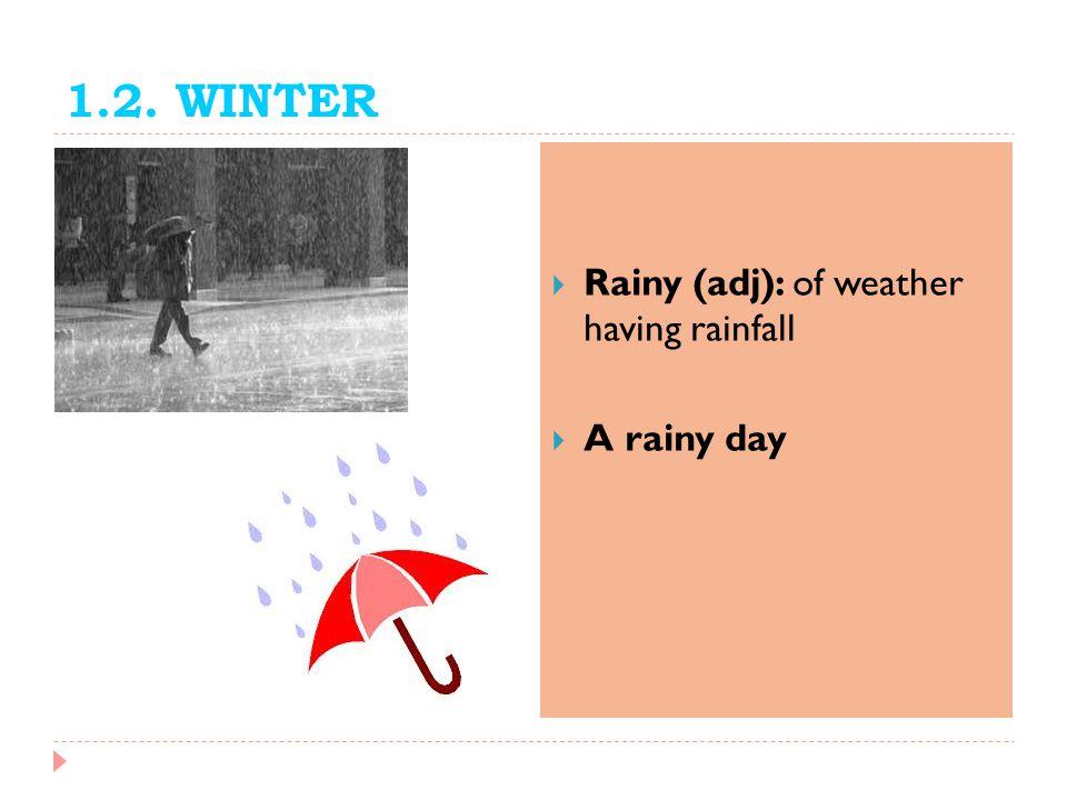 1.2. WINTER Rainy (adj): of weather having rainfall A rainy day