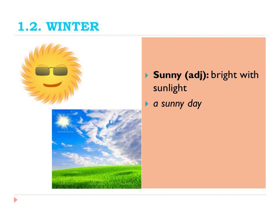 1.2. WINTER Sunny (adj): bright with sunlight a sunny day