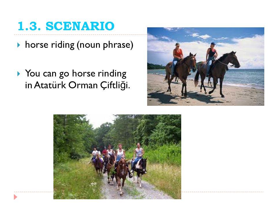 1.3. SCENARIO horse riding (noun phrase)