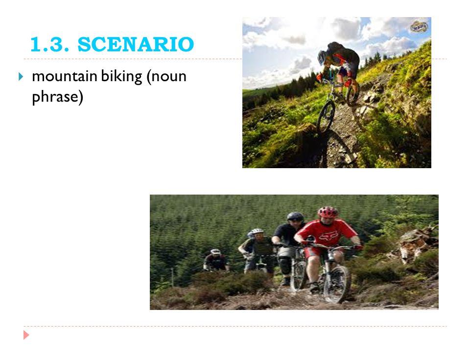 1.3. SCENARIO mountain biking (noun phrase)