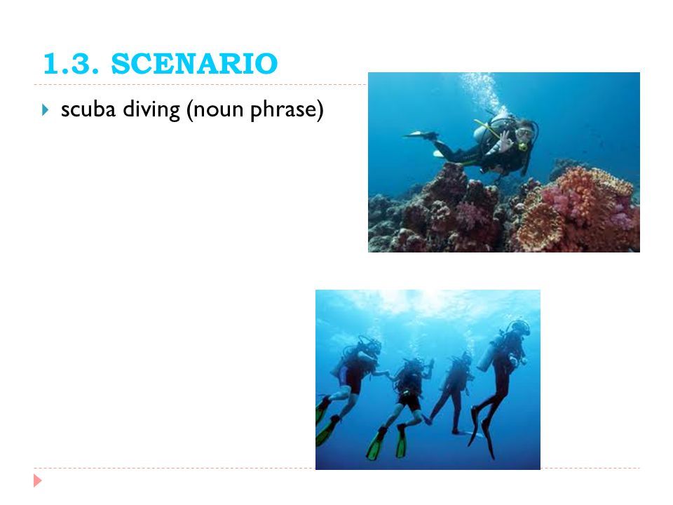 1.3. SCENARIO scuba diving (noun phrase)