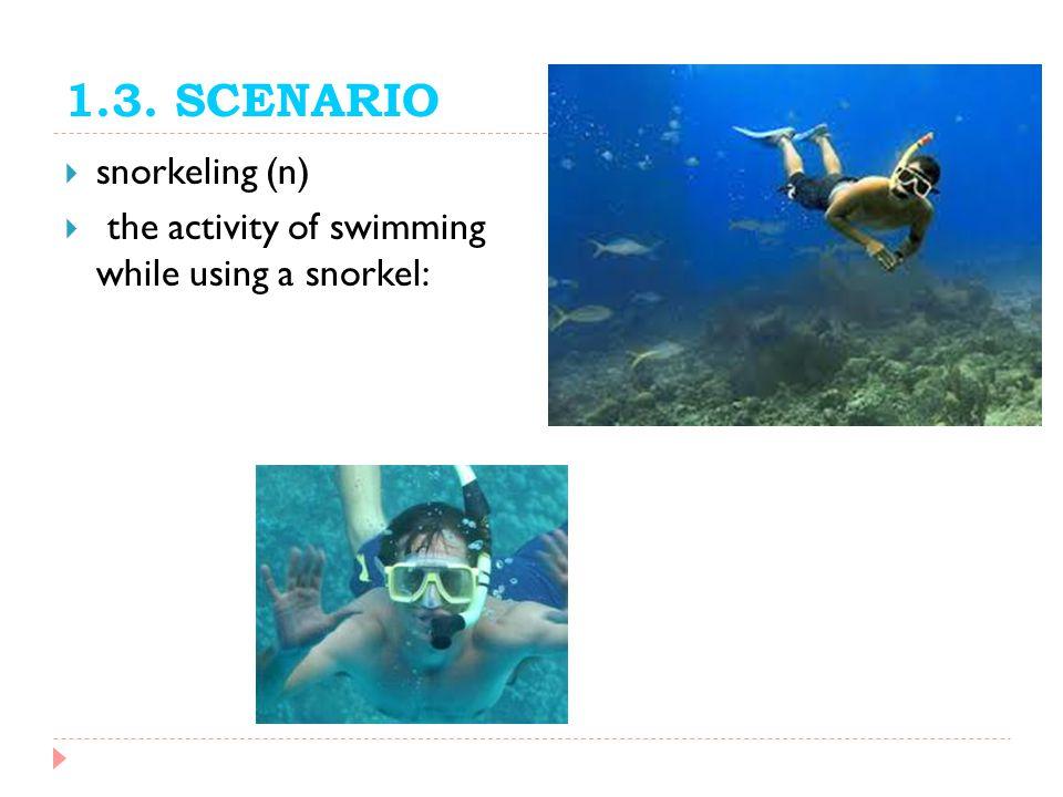 1.3. SCENARIO snorkeling (n)