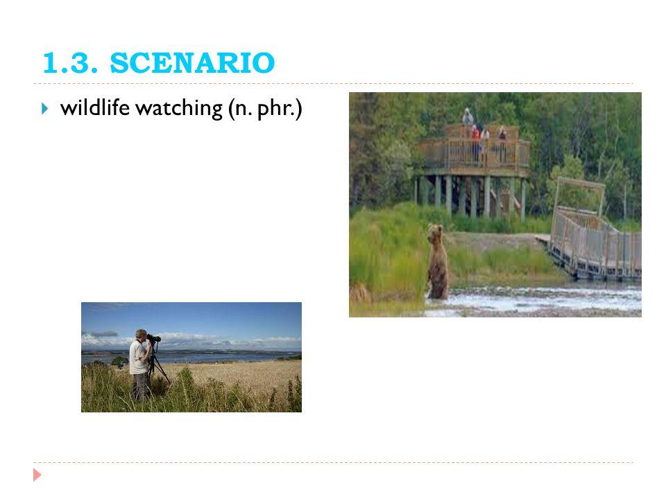 1.3. SCENARIO wildlife watching (n. phr.)