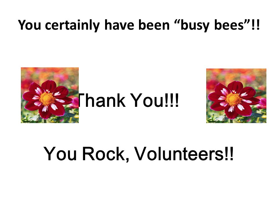 You certainly have been busy bees !!