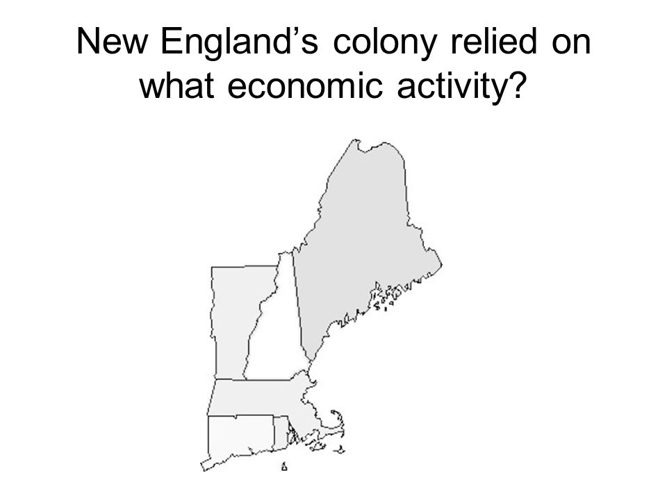 New England's colony relied on what economic activity