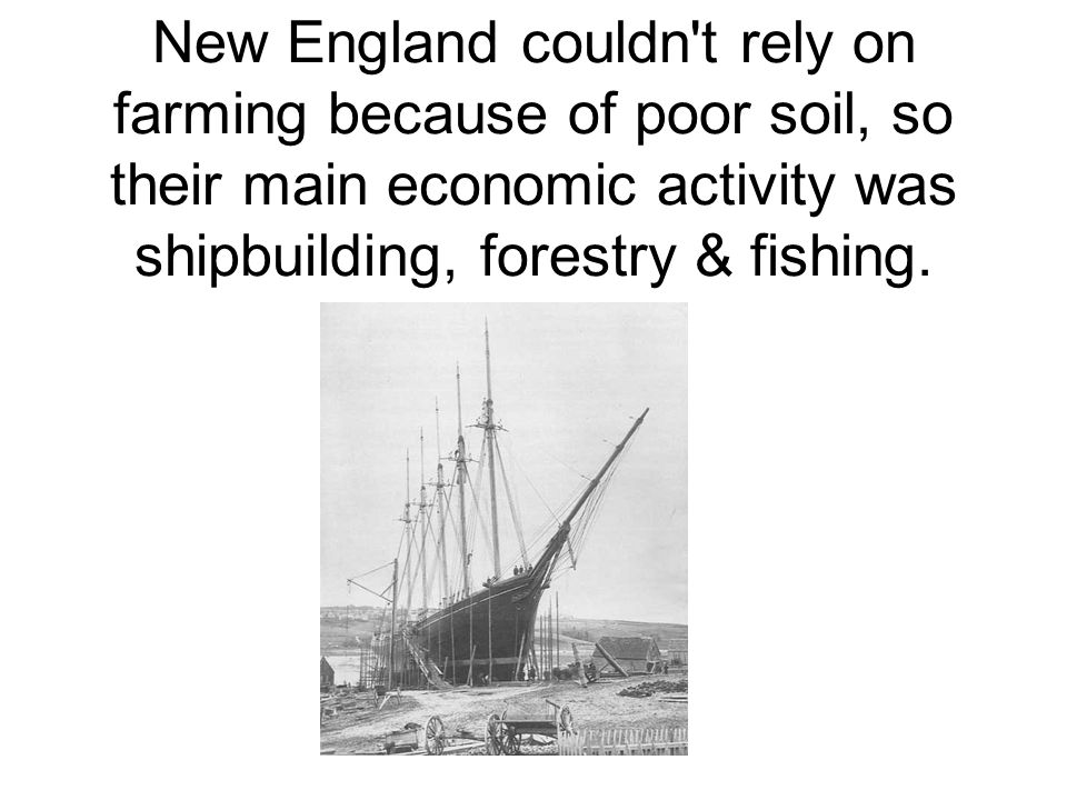 New England couldn t rely on farming because of poor soil, so their main economic activity was shipbuilding, forestry & fishing.