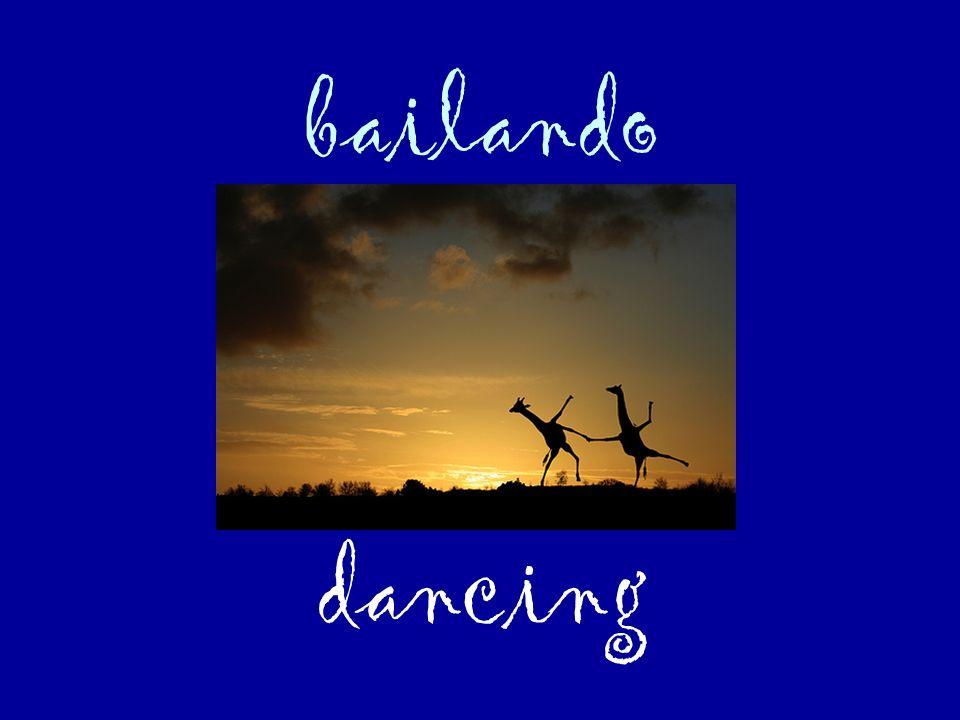 bailando dancing