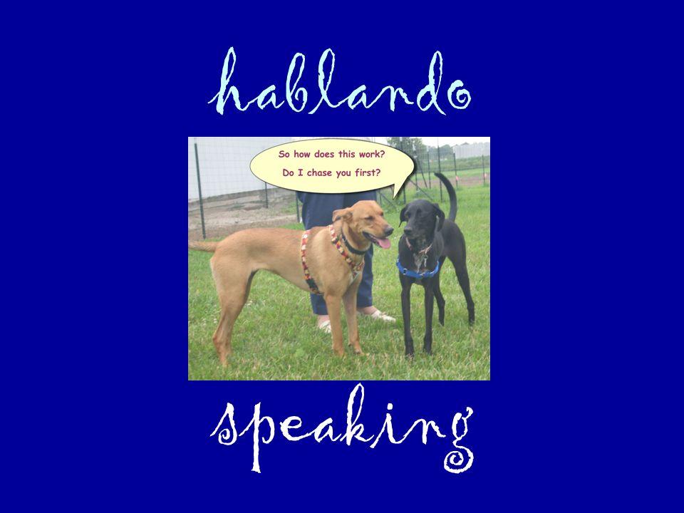 hablando speaking